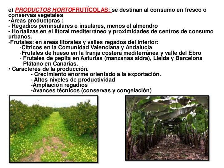 e) PRODUCTOS HORTOFRUTÍCOLAS: se destinan al consumo en fresco oconservas vegetales•Áreas productoras :- Regadíos peninsul...