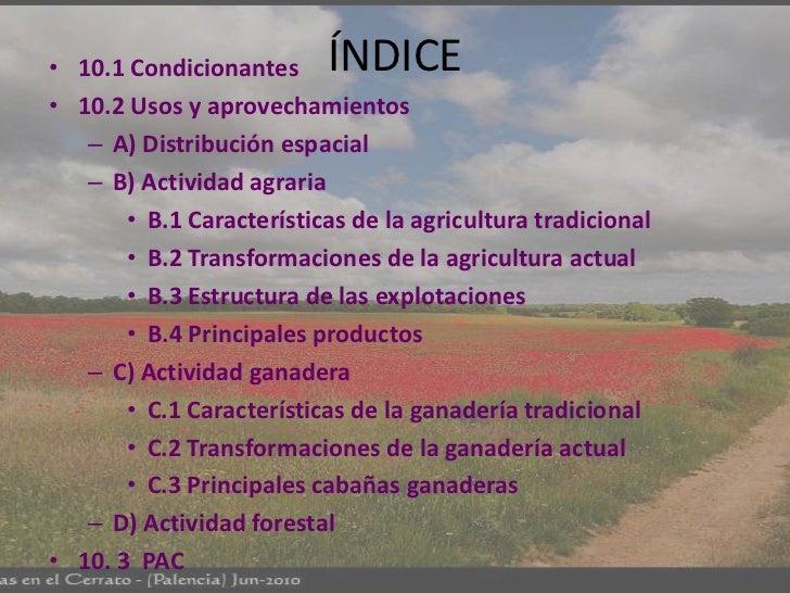 • 10.1 Condicionantes     ÍNDICE• 10.2 Usos y aprovechamientos   – A) Distribución espacial   – B) Actividad agraria      ...