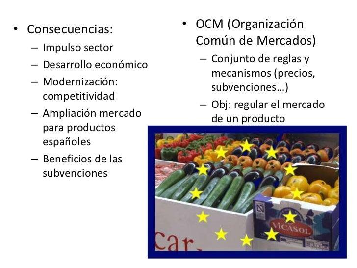 • Consecuencias:           • OCM (Organización  – Impulso sector                             Común de Mercados)           ...