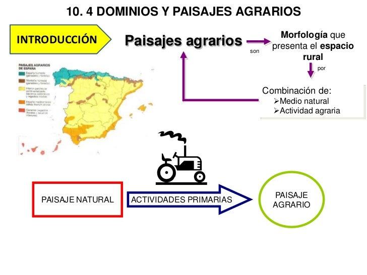 10. 4 DOMINIOS Y PAISAJES AGRARIOS                                                       Morfología queINTRODUCCIÓN       ...