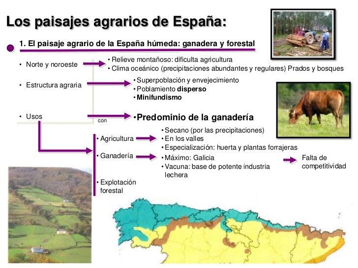 Los paisajes agrarios de España: 1. El paisaje agrario de la España húmeda: ganadera y forestal                           ...