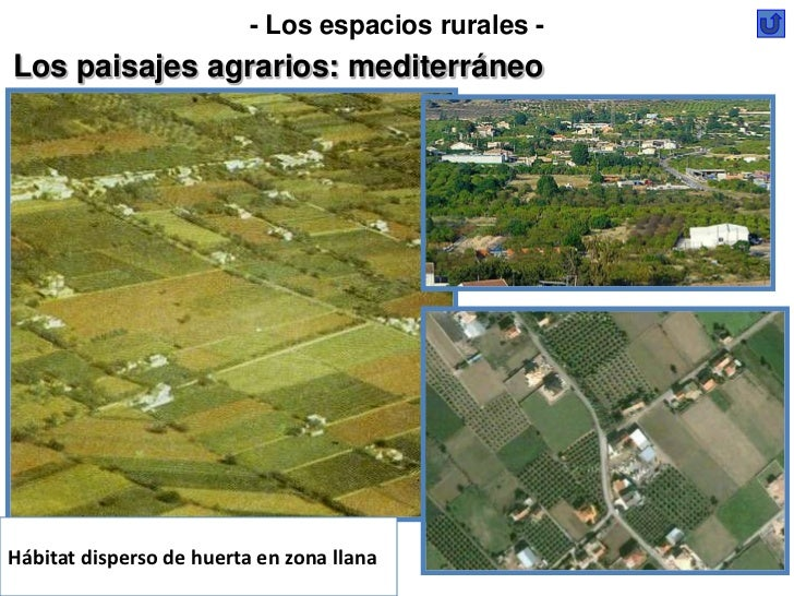 - Los espacios rurales -Los paisajes agrarios: mediterráneoHábitat disperso de huerta en zona llana