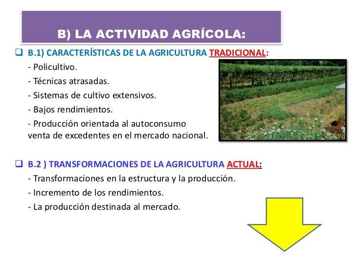 B) LA ACTIVIDAD AGRÍCOLA: B.1) CARACTERÍSTICAS DE LA AGRICULTURA TRADICIONAL:  - Policultivo.  - Técnicas atrasadas.  - S...