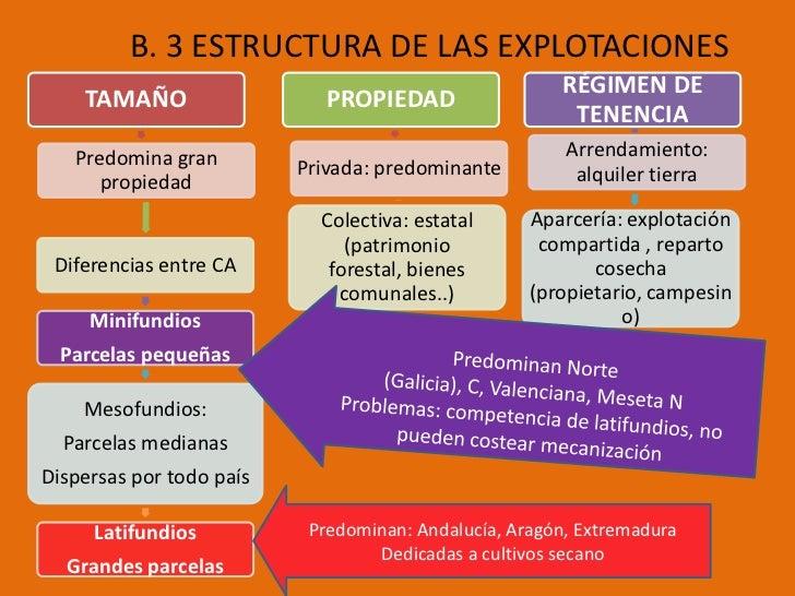 B. 3 ESTRUCTURA DE LAS EXPLOTACIONES                                                       RÉGIMEN DE    TAMAÑO           ...