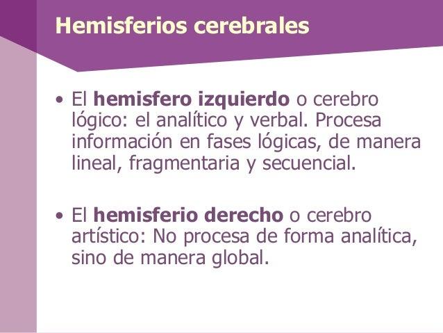 Lóbulos cerebrales• En el cerebro existe un gran surco que lo divide enhemisferio derecho e izquierdo.• Las cisuras permit...