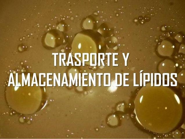 TRASPORTE Y ALMACENAMIENTO DE LÍPIDOS