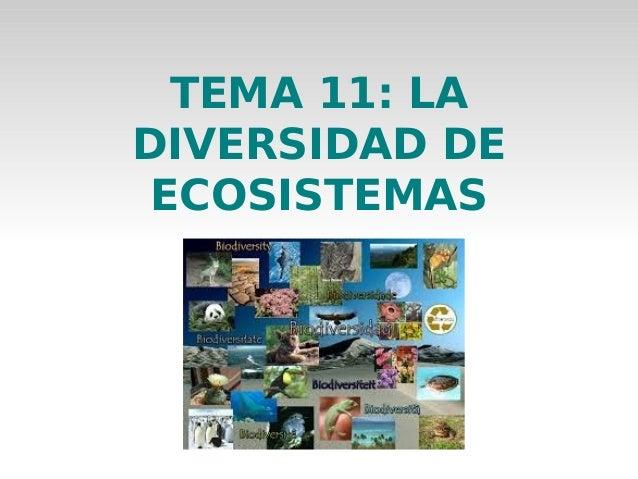 TEMA 11: LA DIVERSIDAD DE ECOSISTEMAS