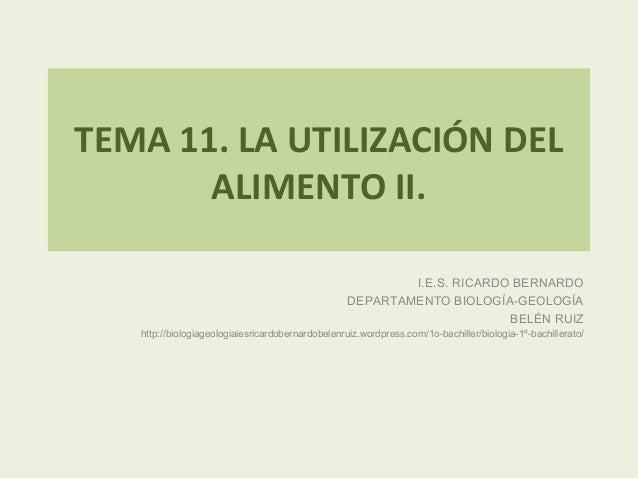 TEMA 11. LA UTILIZACIÓN DEL       ALIMENTO II.                                                           I.E.S. RICARDO BE...