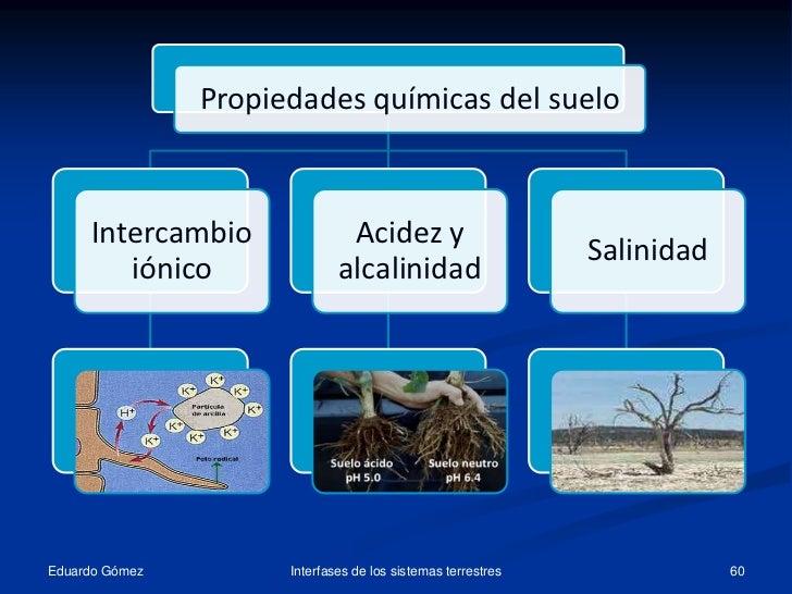 Tema11 el suelo propiedades 1 for Componentes quimicos del suelo