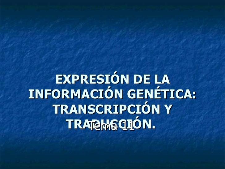 EXPRESIÓN DE LAINFORMACIÓN GENÉTICA:   TRANSCRIPCIÓN Y     TRADUCCIÓN.        Tema 11