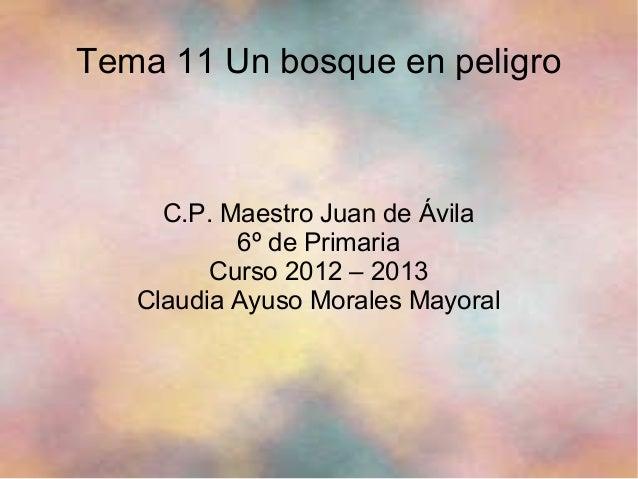 Tema 11 Un bosque en peligroC.P. Maestro Juan de Ávila6º de PrimariaCurso 2012 – 2013Claudia Ayuso Morales Mayoral