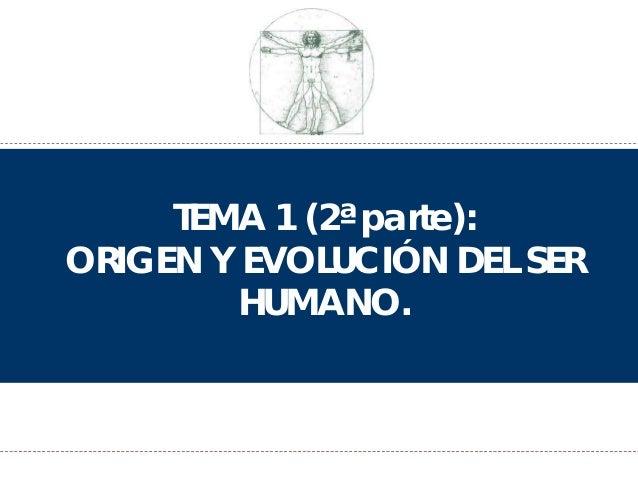 TEMA 1 (2ª parte): ORIGEN Y EVOLUCIÓN DEL SER HUMANO.