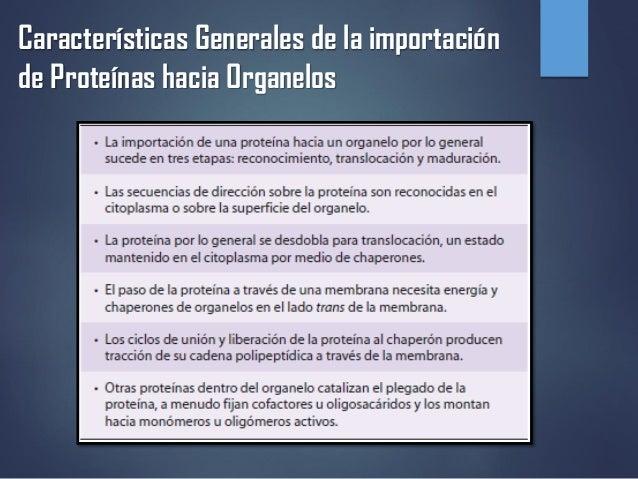 Características Generales de la importación de Proteínas hacia Organelos