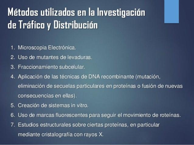 Métodos utilizados en la Investigación de Tráfico y Distribución 1. Microscopia Electrónica. 2. Uso de mutantes de levadur...