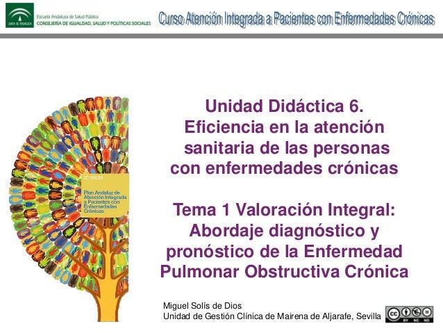 Unidad Didáctica 6. Eficiencia en la atención sanitaria de las personas con enfermedades crónicas Tema 1 Valoración Integr...