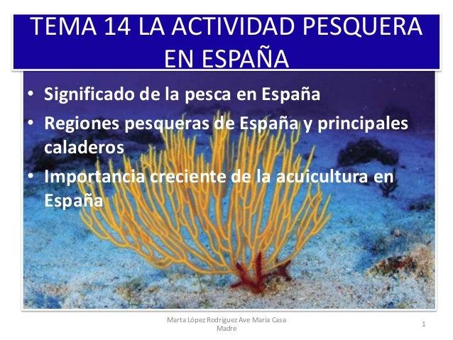 TEMA 14 LA ACTIVIDAD PESQUERA EN ESPAÑA • Significado de la pesca en España • Regiones pesqueras de España y principales c...