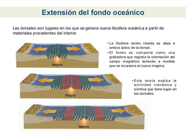 Convergencia Continental-oceánicaLa litosfera continental es más ligera y gruesa que la oceánica. Por estarazón, al conver...