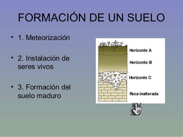 Tema15 procesos sedimentarios2 for Formacion de los suelos