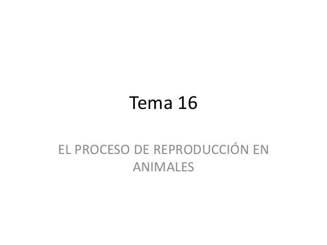 Tema 16 EL PROCESO DE REPRODUCCIÓN EN ANIMALES