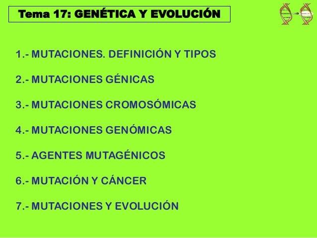 Tema 17: GENÉTICA Y EVOLUCIÓN 1.- MUTACIONES. DEFINICIÓN Y TIPOS 2.- MUTACIONES GÉNICAS 3.- MUTACIONES CROMOSÓMICAS 4.- MU...