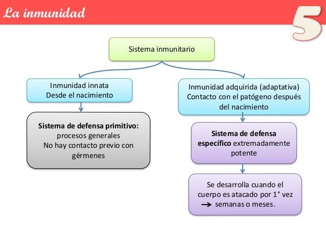 Tema 18: La Inmunidad Slide 3