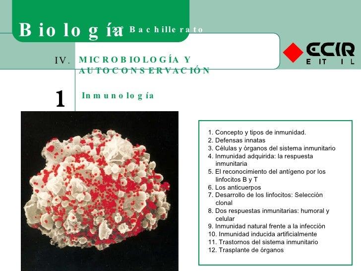 MICROBIOLOGÍA Y AUTOCONSERVACIÓN IV. 19 Inmunología Biología 2º Bachillerato 1. Concepto y tipos de inmunidad. 2. Defensas...