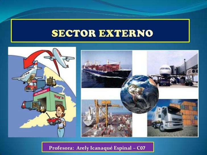 SECTOR EXTERNO<br />Profesora:  ArelyIcanaqué Espinal – C07<br />