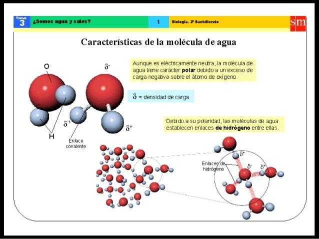 Resultado de imagen de La química es la base de la vida
