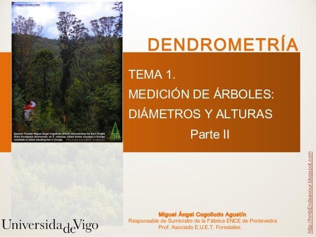 DENDROMETRÍATEMA 1.MEDICIÓN DE ÁRBOLES:DIÁMETROS Y ALTURAS                        Parte II                                ...