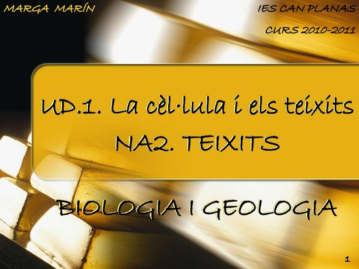 MARGA MARÍN              IES CAN PLANAS                          CURS 2010-2011    UD.1. La cèl·lula i els teixits        ...