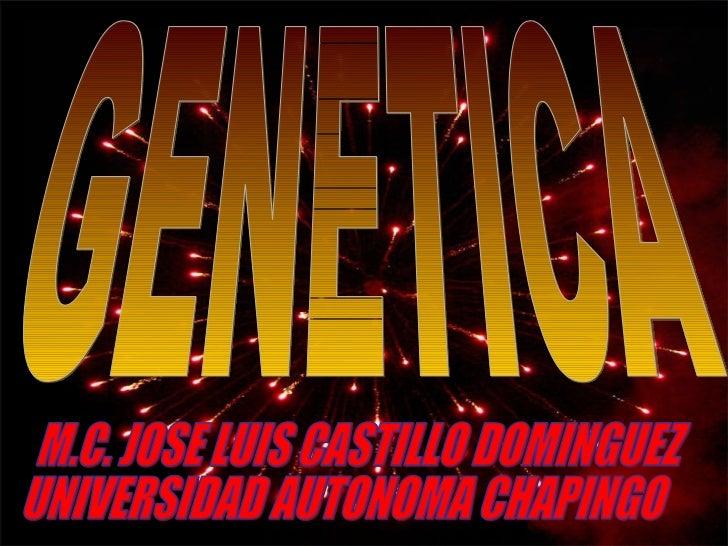 GENETICA M.C. JOSE LUIS CASTILLO DOMINGUEZ UNIVERSIDAD AUTONOMA CHAPINGO