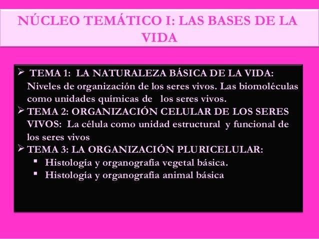 NÚCLEO TEMÁTICO I: LAS BASES DE LA VIDA  TEMA 1: LA NATURALEZA BÁSICA DE LA VIDA: Niveles de organización de los seres vi...