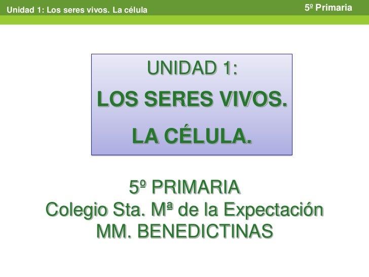 Unidad 1: Los seres vivos. La célula           5º Primaria                                   UNIDAD 1:                    ...