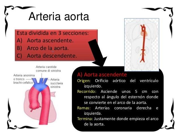 Los indicios de la tromboflebitis la mano
