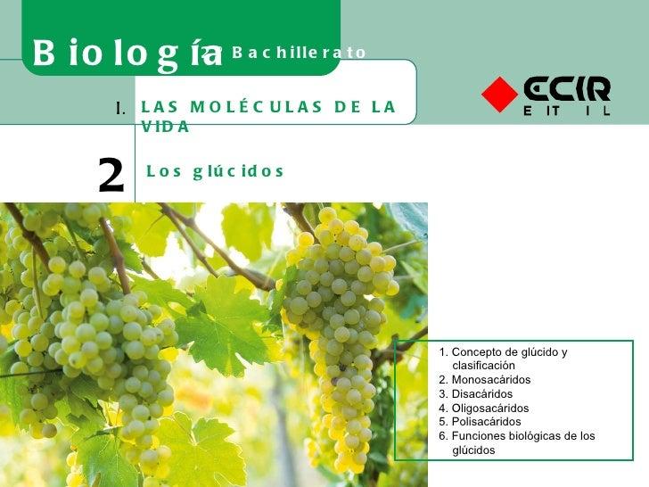 LAS MOLÉCULAS DE LA VIDA I. 2 Los glúcidos Biología 2º Bachillerato 1. Concepto de glúcido y clasificación 2. Monosacárido...