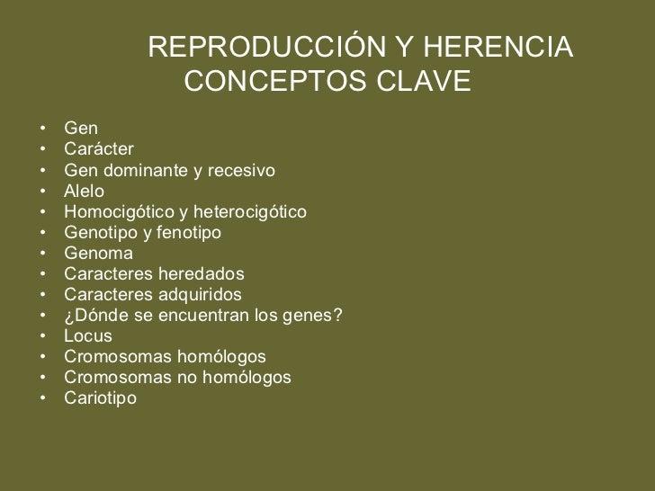REPRODUCCIÓN Y HERENCIA CONCEPTOS CLAVE <ul><li>Gen </li></ul><ul><li>Carácter </li></ul><ul><li>Gen dominante y recesivo ...