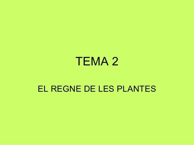 TEMA 2EL REGNE DE LES PLANTES