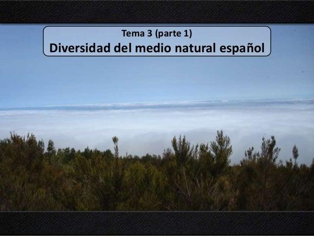 Tema 3 (parte 1) Diversidad del medio natural español
