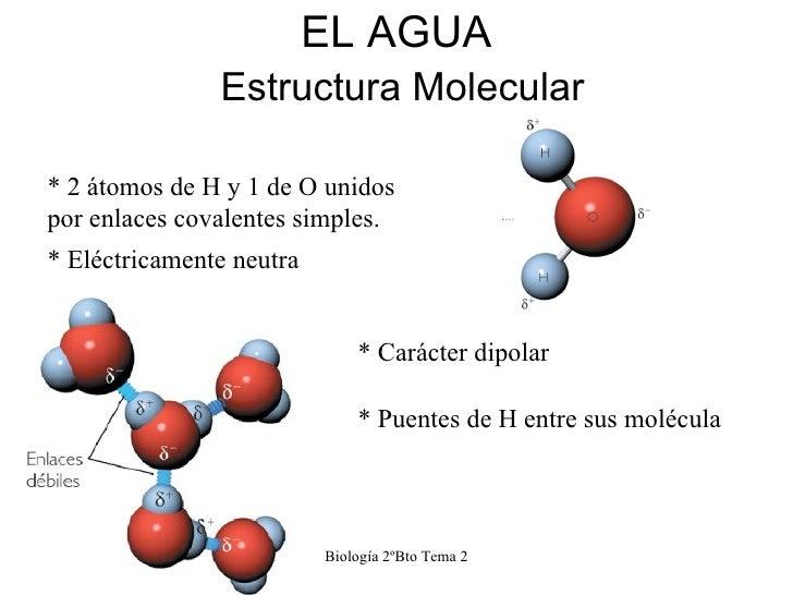 Tema 2 El Agua