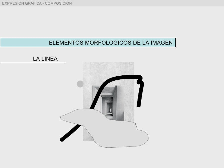 ELEMENTOS MORFOLÓGICOS DE LA IMAGEN LA LÍNEA