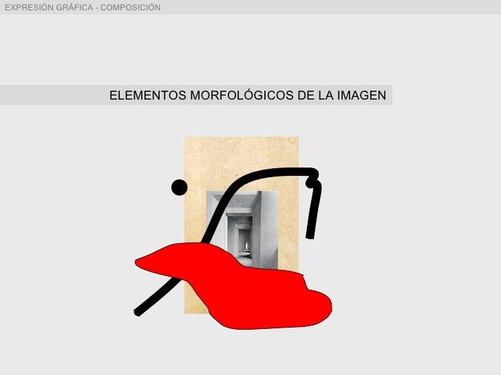 ELEMENTOS MORFOLÓGICOS DE LA IMAGEN