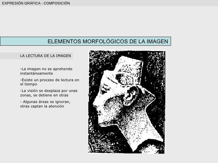 ELEMENTOS MORFOLÓGICOS DE LA IMAGEN <ul><li>LA LECTURA DE LA IMAGEN </li></ul><ul><li>La imagen no se aprehende instantáne...