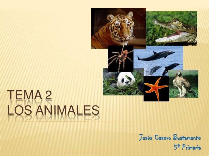 TEMA 2 LOS ANIMALES                Jesús Casero Bustamante                             5º Primaria