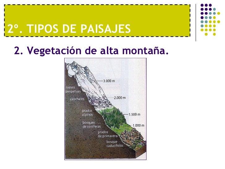 Tema 2 los paisajes de la tierra vv - Tipos de paisajes ...