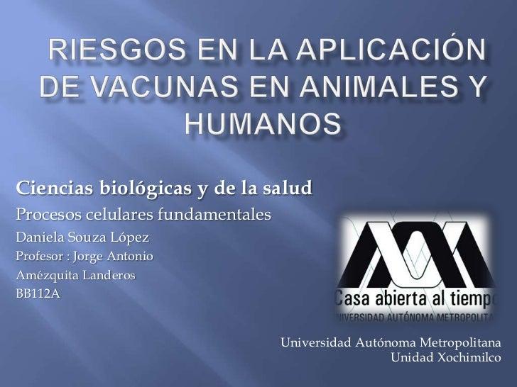 Ciencias biológicas y de la saludProcesos celulares fundamentalesDaniela Souza LópezProfesor : Jorge AntonioAmézquita Land...