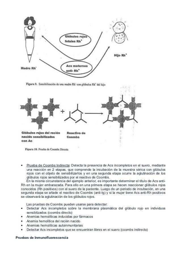 •   Prueba de Coombs Indirecta: Detecta la presencia de Acs incompletos en el suero, mediante       una reacción en 2 etap...