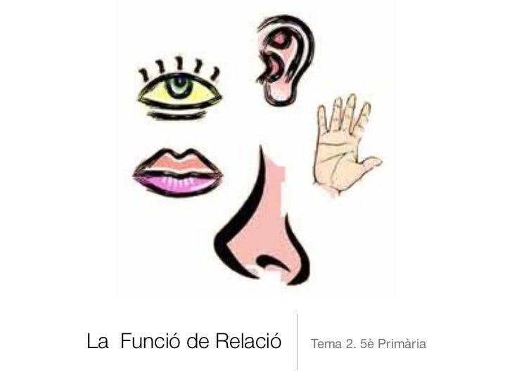 La Funció de Relació   Tema 2. 5è Primària