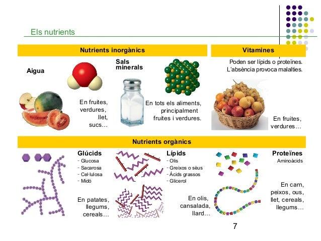 Food Vitamins And Minerals List