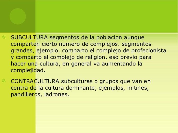 instituciones o grupos que representan la subcultura y contracultura