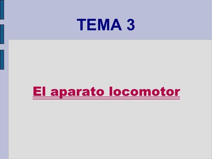 TEMA 3 El aparato locomotor